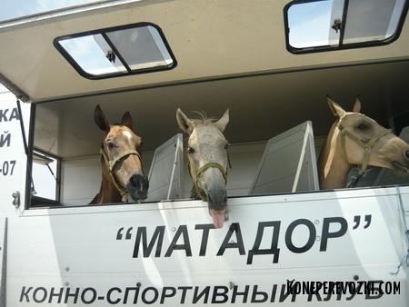 anapa-kazahstan2009_04