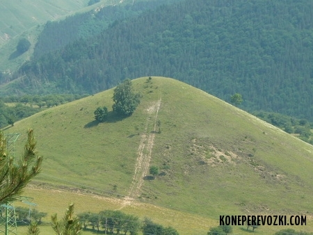 serbiya_2009_01