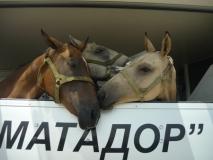 anapa-kazahstan2009_05