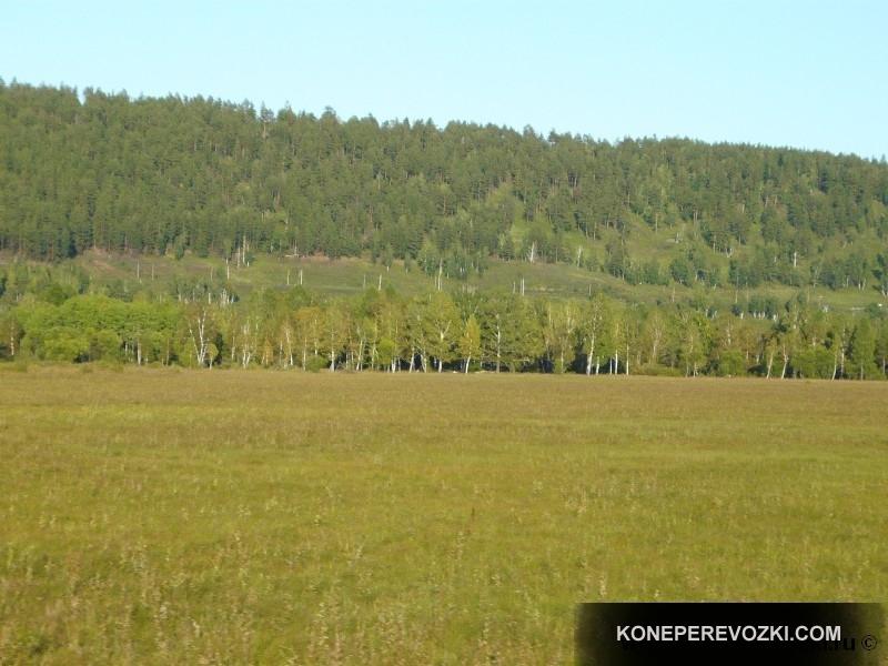 mongolia_2009_06-1